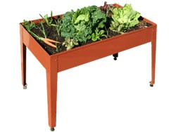 tavolo, orto, orto urbano