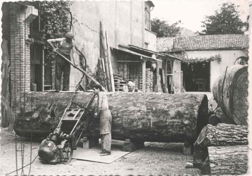 lissone, legname, legno, mobili, mostra legno, segheria, deposito legno, lav'oro